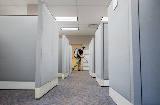 After-hours janitor vacuums the carpets in an office