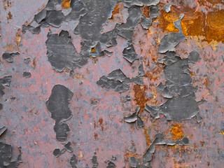 Gray metal background with rost