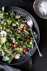 Lamb's lettuce salad with radish, tomatoes and coriander vinaigrette