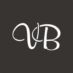 VB logo letter design template vector