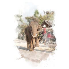 Elephant lifts its leg for mahout. Watercolor painting (retouch).
