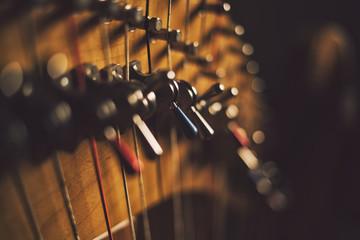 Harp in Close Up