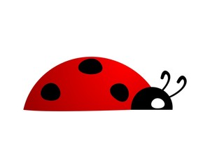 ladybug app