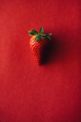 Strawberry on a Red Background