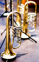 bavarian brass instruments