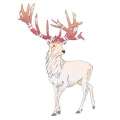 Magical white deer character illustration