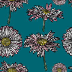 Seamless floral pattern with chamomile.