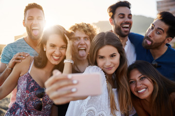 Group of friends taking selfie together having fun