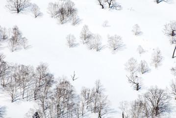 冬の日勝峠(北海道)