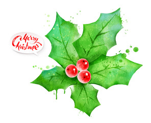 Vector watercolor illustration of mistletoe