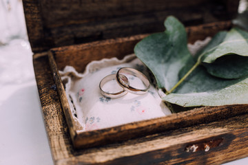 Wedding rings from white gold in a wooden box filled with moss, greenery and grass. Details and decor of rustic ceremony