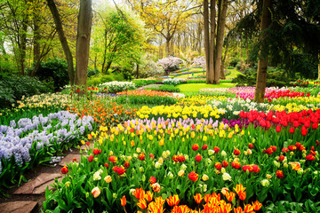 Fotobehang Groene Colourful Tulips Flowerbeds and Path in an Spring Formal Garden, retro toned