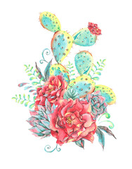 Watercolor vintage blooming roses, cactus, succulent