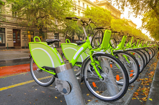 bicycle rental on the city street, ecological transport