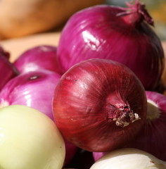 Red Onion Display