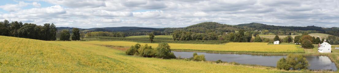 Rural Panoramic