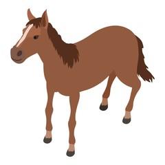 Horse icon, isometric style