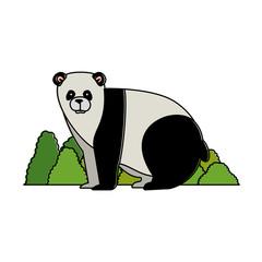 wild bear panda with bush