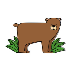 wild bear grizzly with bush