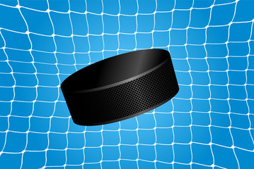 Goal - a hockey puck in the net