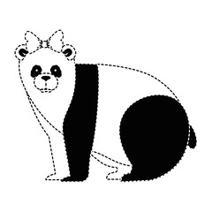 wild bear panda icon