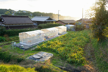 agricultural community in Japan