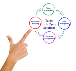 presentingTalent Life Cycle Solutions