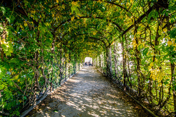 Herbst in Schlossgarten Schönbrunn in Wien