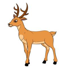 Illustration of Deer Cartoon -Vector Illustration