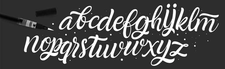 Vector Alphabet. Exclusive Custom Letters. Lettering and Custom Typography for Designs: Logo, for Poster, Invitation, etc. Handwritten brush style modern cursive font.