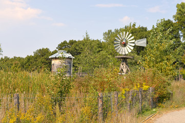 Weather vane and water storage container for the garden