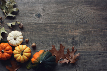 Thanksgiving season still life with colorful small pumpkins, acorn squash and fall leaves over rustic wooden background