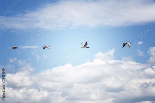 Ab In Den Süden Stockfotos Und Lizenzfreie Bilder Auf Fotoliacom