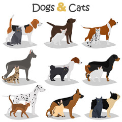 Set of dogs and cats different breeds color flat icons set