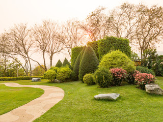 beautiful garden with trees background at sunset