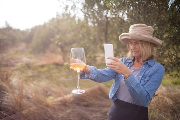 Woman taking a photo of wine glass in olives farm