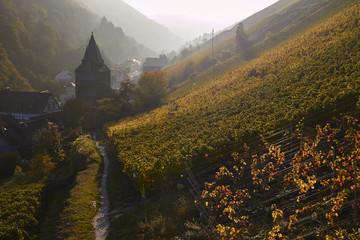Bacharach mit Steeger Tor im Herbst