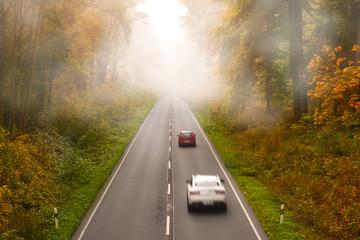 Straße im Wald mit Nebel im Herbst  Verkehr