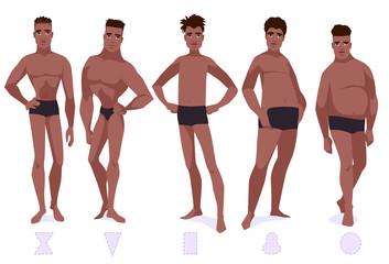 Set of male body shape types - five types.