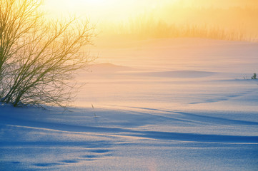Winter foggy landscape. Winter snowfield with snowdrifts in the rays of the rising sun