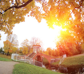 beautiful autumn landscape with Krestovy Bridge and the sunset sun in the suburb of St. Petersburg Pushkin, Russia..