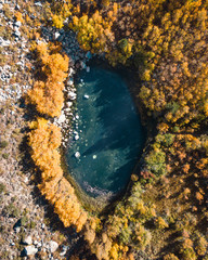 Aerial Fish Shaped Fall Lake