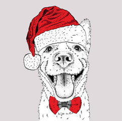 The christmas poster with the image dog portrait in Santa's hat. Vector illustration.