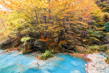 colorful autumn landscape at urederra source, Spain
