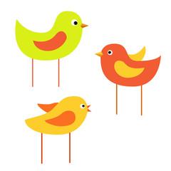 birdies_vector