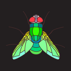 Mosaicfly fly