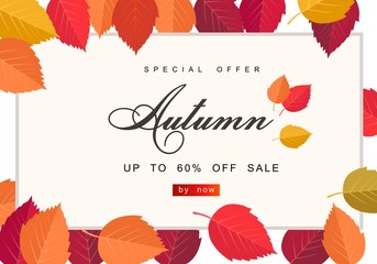 Autumn sale background template. Poster, card, label, banner design set. Layouts for shopping sale or promo poster and frame leaflet or web banner
