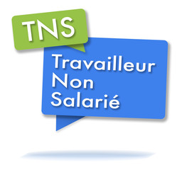 French TNS initals in colored bubbles