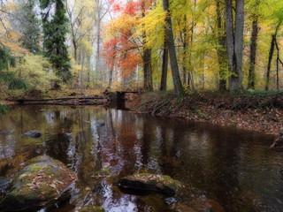 Creek in autumn landscape