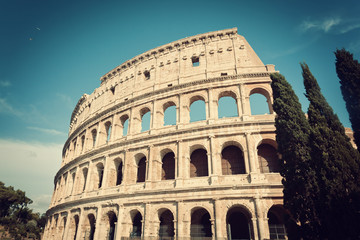 Colosseum with cypress trees in vintage tone